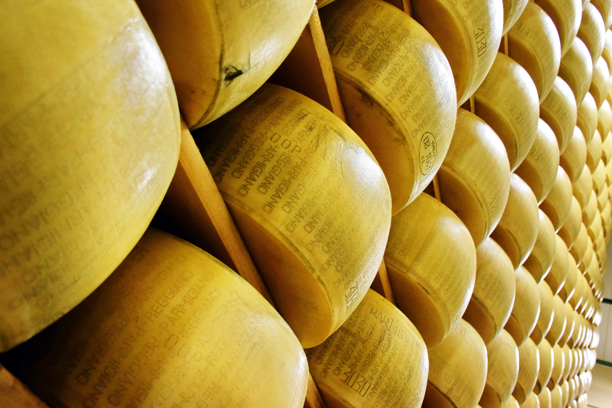 Parmigiano Reggiano and traditional balsamic vinegar of Modena
