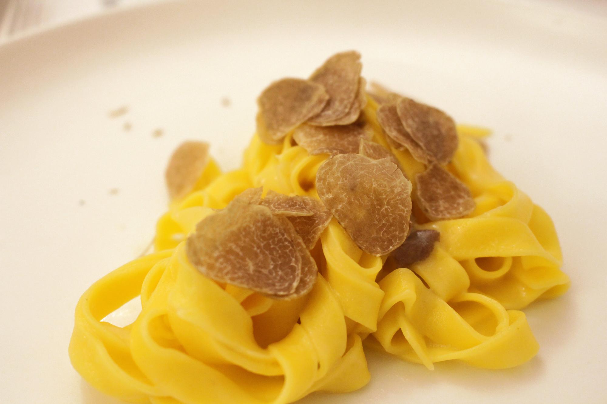 A Caccia di tartufo sui Colli Bolognesi - Truffle Experience in Bologna Hills